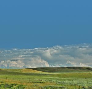 photo de plusieurs champs de paturage à perte de vue avec une clôture à l'avant-plan